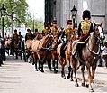 King's Troop Royal Horse Artillery (17185593320).jpg