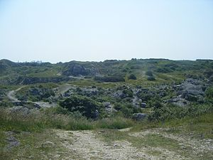 King Barrow Quarry - Overhead view of King Barrow Quarry, looking towards The Grove village area.
