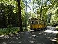 Kirnitzschtalbahn,Wagen Nr.5..Juli 2018.-012.jpg