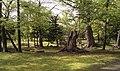 Kita 2 Jonishi, Chuo Ward, Sapporo, Hokkaido Prefecture 060-0002, Japan - panoramio.jpg