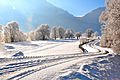 Kleblach-Lind Winterlandschaft 23012011 207.jpg