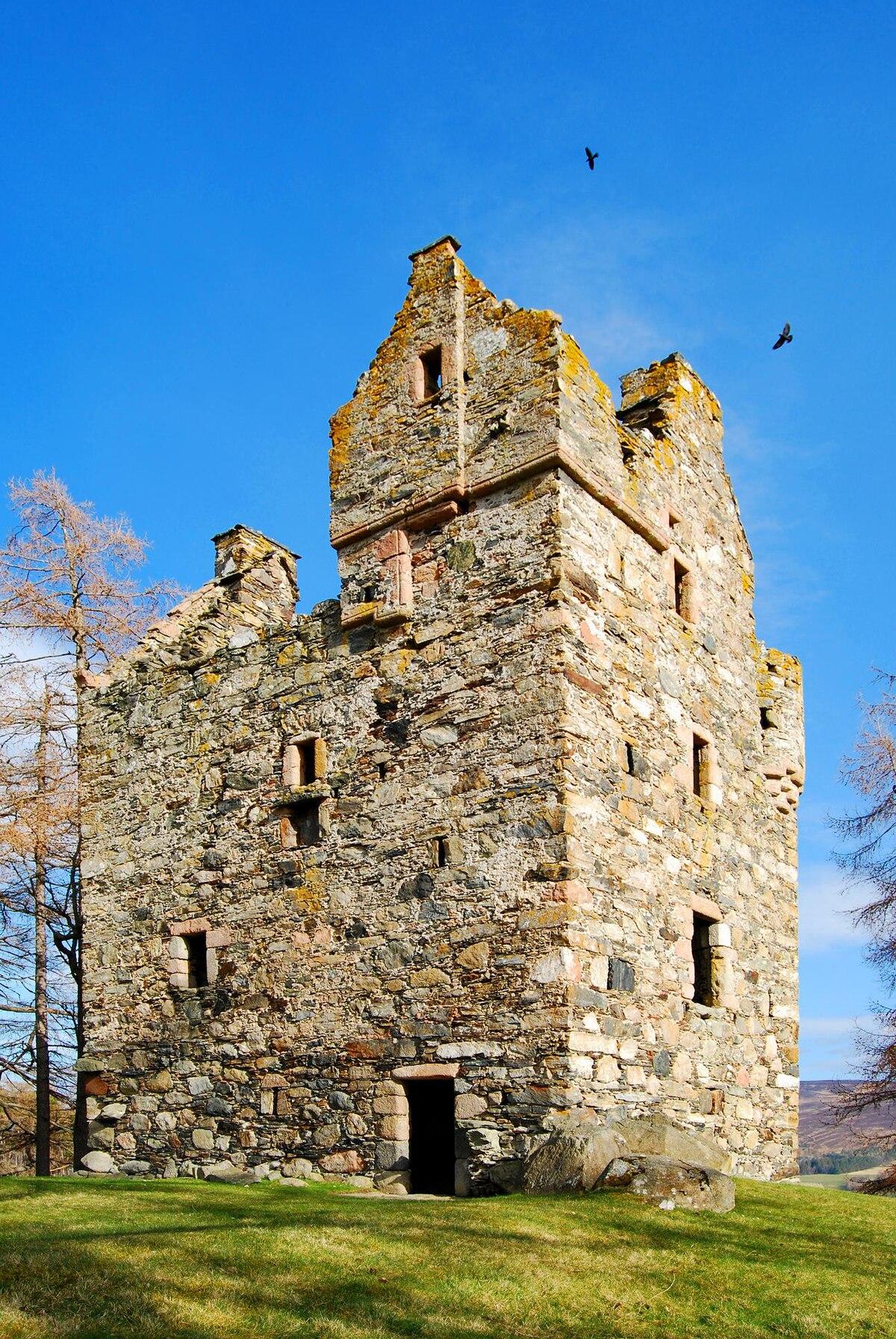 Knock Castle, Aberdeenshire - Wikipedia