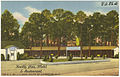 Knotty Pine Motel & Restaurant, on U.S. 301 -- 3 miles South of Lumberton, N. C. (5812040808).jpg