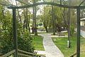 Komorniki, park (2).JPG