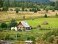 Krasnokamskiy r-n, Permskiy kray, Russia - panoramio (150).jpg