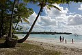 Kuto Bay, Isle of Pines, New Caledonia, 2007 (5).JPG