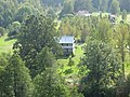 Labanoro sen., Lithuania - panoramio (13).jpg