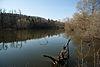Lac Coffy