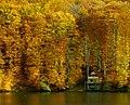 Lacul Mare, Dognecea.jpg