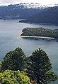 Lago Conguillío 02.jpg
