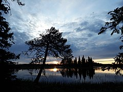 Lake view. Reivo nature reserve. Norrbotten. Sweden. 02.jpg
