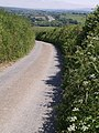 Lane above Cookworthy - geograph.org.uk - 460603.jpg