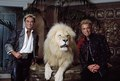 Las Vegas, Nevada's headlining illusionists Siegfried & Roy (Siegried Fischbacher and Roy Horn) in their private apartment at the Mirage Hotel on the Vegas Strip, along with one of their LCCN2011634010.tif