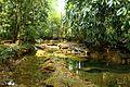 Las preciosas cascadas de Agua Azul, Chiapas. 19.JPG
