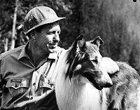 Lassie with actor Robert Bray.jpg
