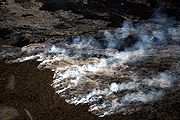 Lava flow on the coastal plain of Kīlauea, on the island of Hawaii, generated this wildfire. This kind of fire cannot be easily prevented or suppressed.