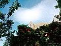 Le Mont Saint Michel, Normandie, FRANCE (35109914421).jpg