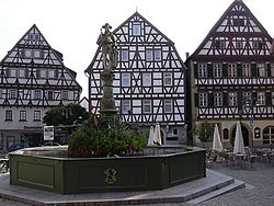 Traditional houses on market square