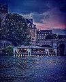 Les jardins du Pont Neuf.jpg