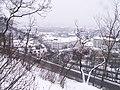 Letenské sady - panoramio (157).jpg