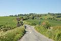 Level Crossing - geograph.org.uk - 1331439.jpg