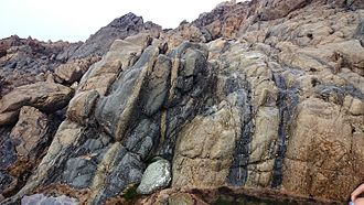 Geology of Guernsey - Tight folds at the contact between Icart Gneiss (light) and mylonitised quartz diorite (dark), western end of Lihou Island.