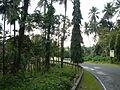 Liliw,Lagunajf5671 05.JPG