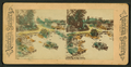 Lincoln Park, Chicago, from Robert N. Dennis collection of stereoscopic views 4.png