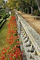 Lisbon, Jardim Botânico da Ajuda-3.JPG