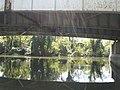 Little Island under the bridge.jpg