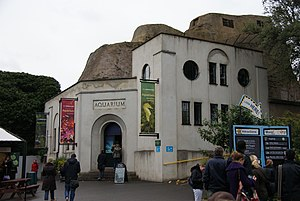London Zoo - Aquarium