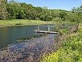 Long Pond in Tyson - panoramio.jpg
