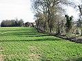 Looking NE along field boundary - geograph.org.uk - 362369.jpg