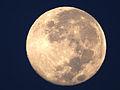 Luna llena (Súper Luna) del 11 de agosto..JPG