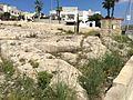 Mġarr cart ruts 06.jpg