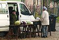 MOs810, WG 2014 66 Puszcza Notecka west (14) Merchant cabbage.JPG