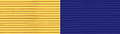 MTNG Physical Readiness Superior Ribbon.PNG