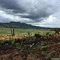 Mae Khatuan, Sop Moei District, Mae Hong Son 58110, Thailand - panoramio.jpg