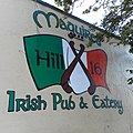 Maguires Hill 16 All June 19 2019-02-05 0952 A300.jpg
