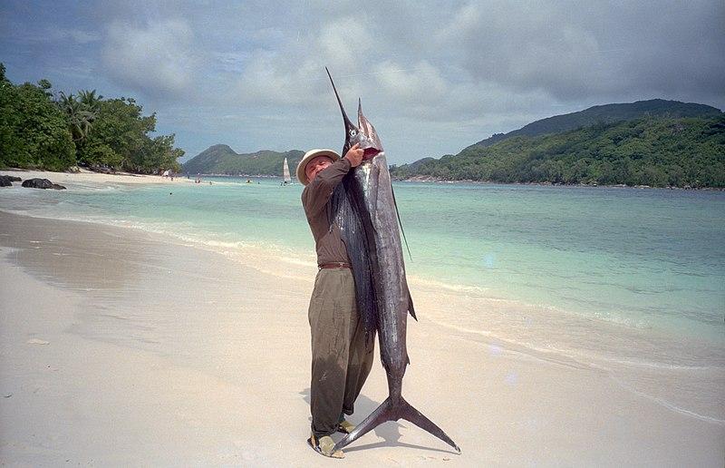 Mahe Beach - author with the sailfish by J. Strzelecki.JPG
