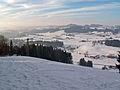 Maierhöfen - Riedholzer Kugel - Riedholz, Obersteig.JPG