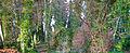 Malahide Castle Woods Bokehrama (18mm f 0.3) (6956896123).jpg