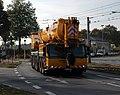 Mannheim - Gräser Eschbach - Liebherr 1300 - 2018-10-20 14-50-041.jpg