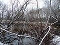 Maplewood, MN - panoramio (1).jpg