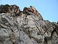 Marble Rocks Bhedaghat.jpg
