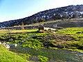 Mart 2012 - panoramio.jpg