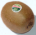 Mature kiwifruit.JPG