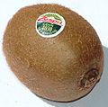 Mature kiwifruit.JPG