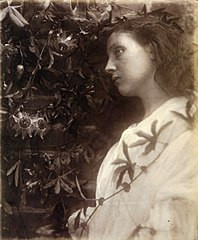 Maud, by Julia Margaret Cameron.jpg