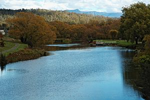 Meander River (Tasmania) - The Meander, flowing through the Deloraine Green